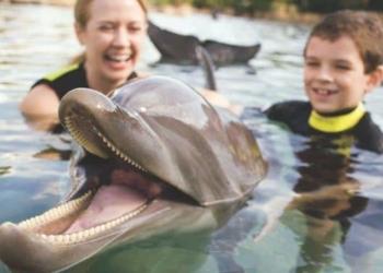 En la imagen sale una mujer y un niño junto a un delfín