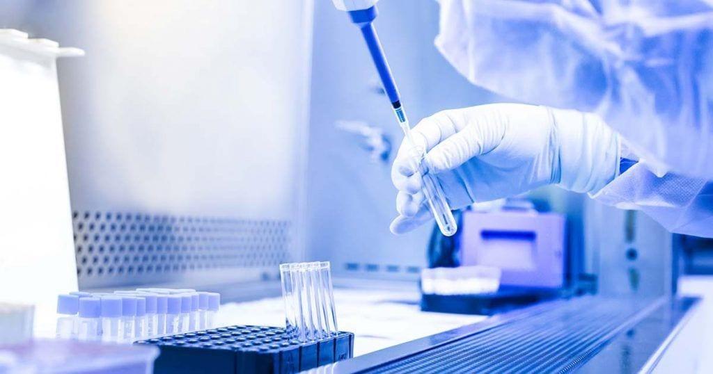 células madres