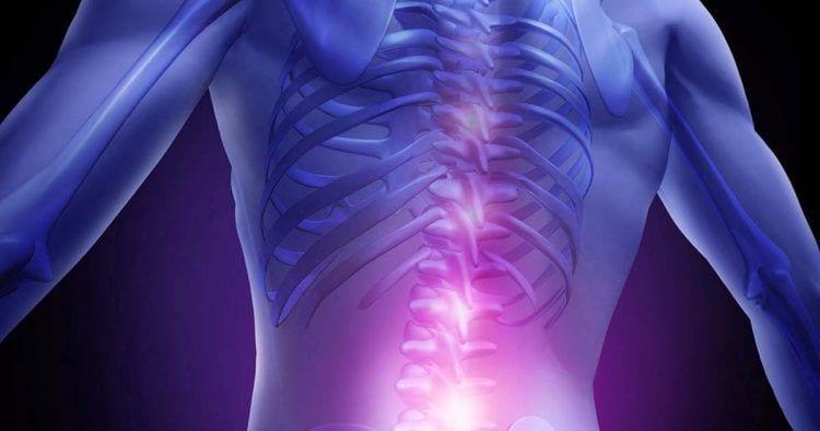 Desarrollan microelectrodos que permiten el movimiento estimulando la médula espinal