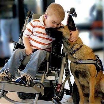 Niño en silla besa a su perro