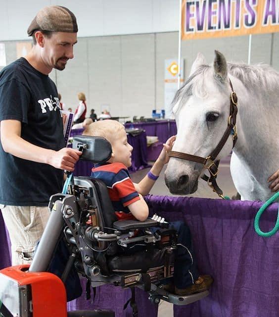 Niño en silla junto a un caballo
