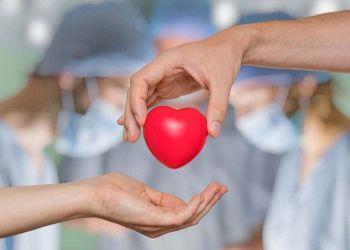 España revalida su predominio mundial en la donación de órganos
