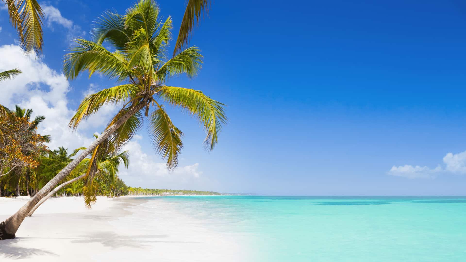 Punta Cana Accesible. Destinos accesibles