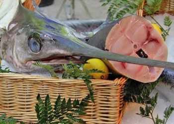 Sanidad aconseja limitar la ingesta de pescado a 3 o 4 raciones a la semana por la presencia de mercurio
