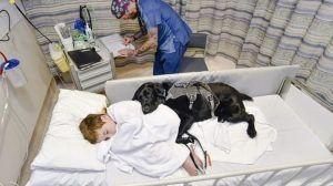 James, niño con autismo con su perro Mahe