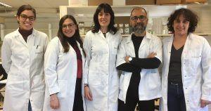 Investigadores encuentran una proteína determinante en la metástasis infantil. Foto: EP