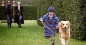 After Thomas (2006) película dedicada al autismo