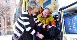 Perro guía en el interior de una ambulancia junto a su dueña.
