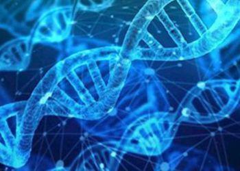Genomas del ADN