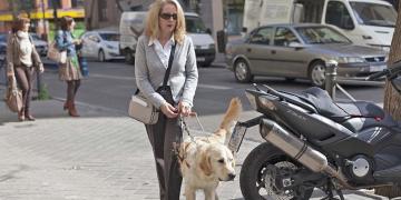 Persona ciega o con discapacidad visual y con perro guía