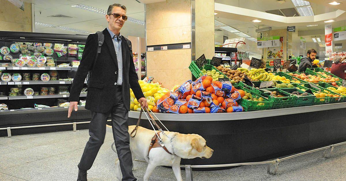 Persona ciega con discapacidad visual con perro guía