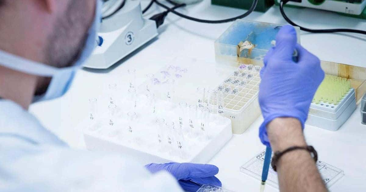 Investigación laboratorio