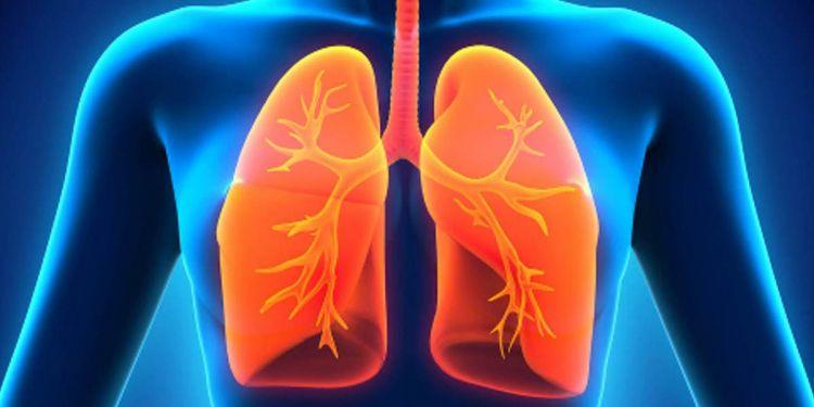 Pulmones hipoxemia