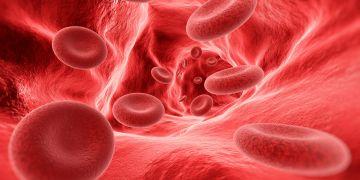 Células sanguineas VIH SIDA