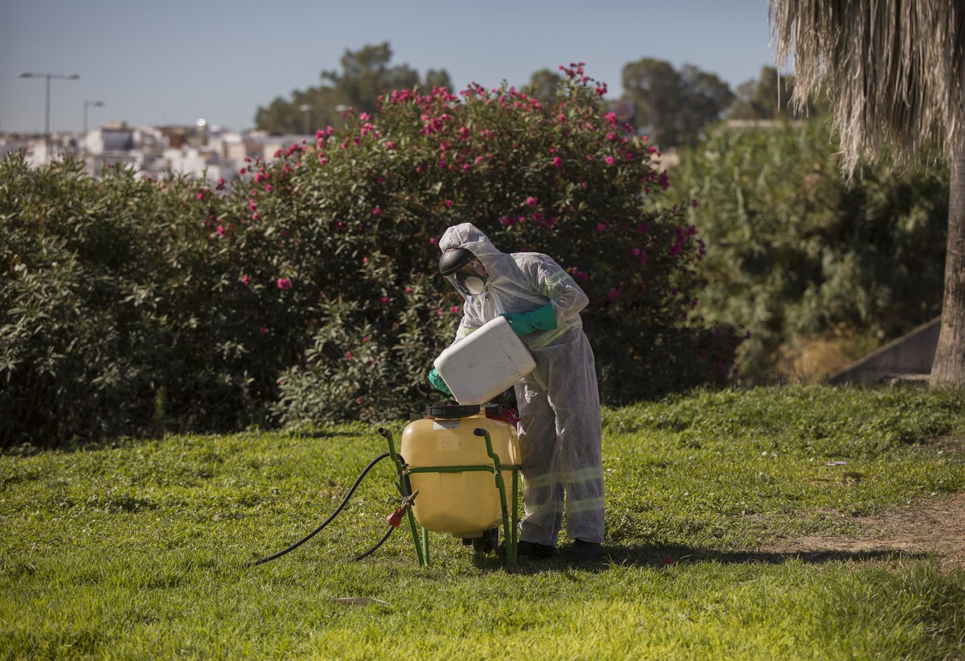 Fumigación Virus del Nilo Occidental