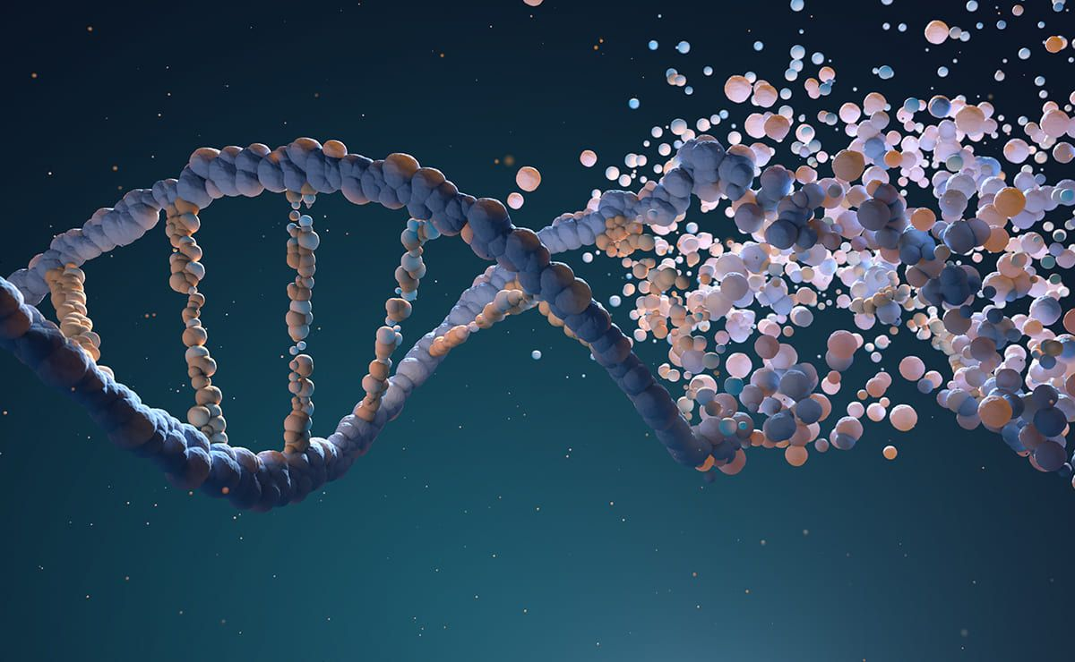 Investigación Genoma Humano
