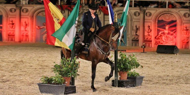 Cómo bailan los caballos andaluces en la Real Escuela de Arte Ecuestre de Jerez recauda fondos cáncer