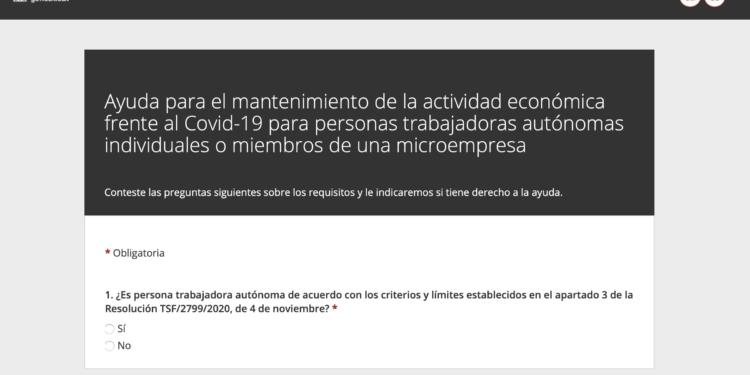 Ayuda para el mantenimiento de la actividad economica frente al Covid-19