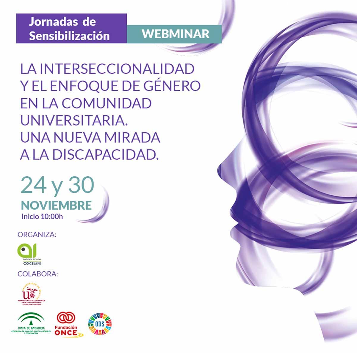 Cartel Webimar Andalucía Inclusiva Cocemfe