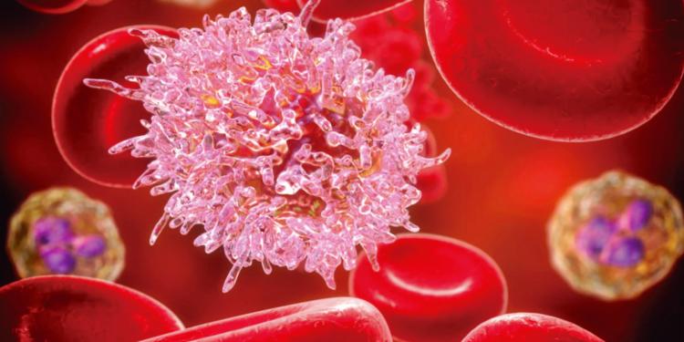 ácido fólico y leucemia