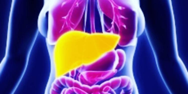 hierro exceso cuerpo hemocromatosis