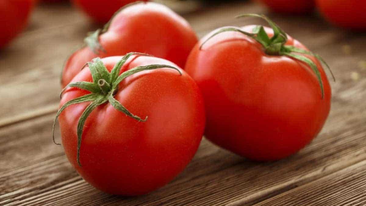 Tomate, una hortaliza para bajar de peso y que refuerza el sistema inmunológico