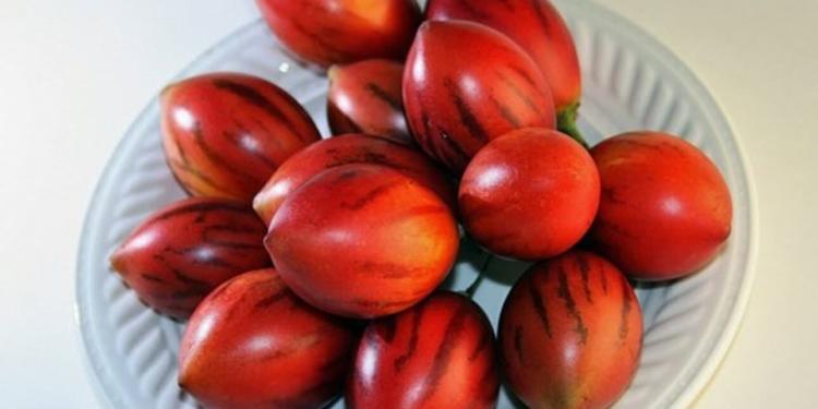 jugo tomate de arbol