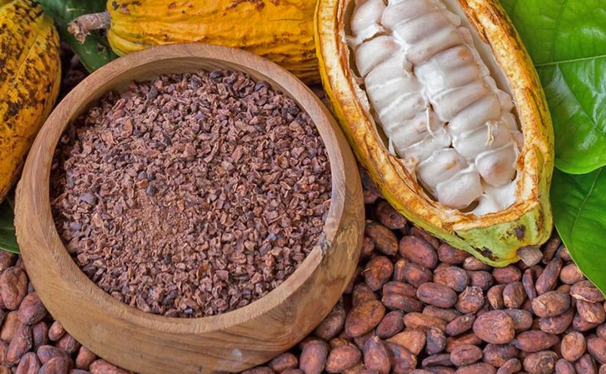 Fruta de cacao
