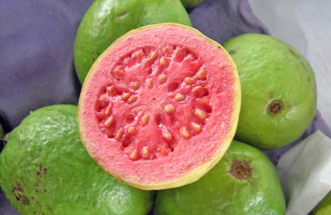 Guayaba vitamina C