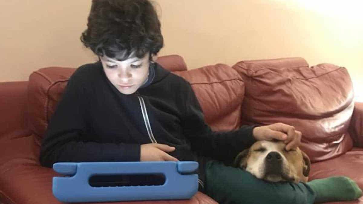 Guille, niño con autismo, junto a su perrita | Foto: Twitter