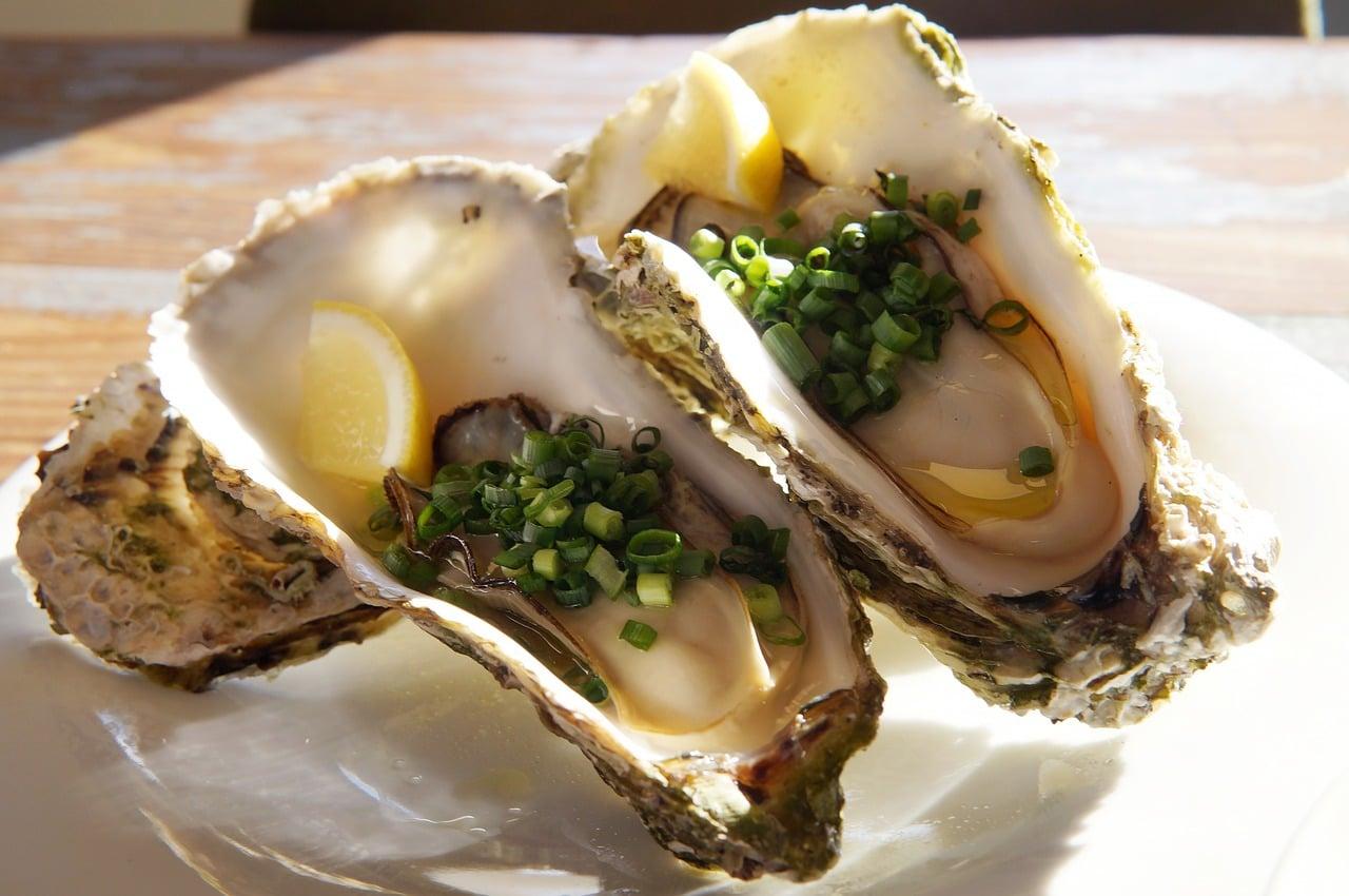 Las Ostras es un alimento rico en hierro que refuerza sistema inmunológico