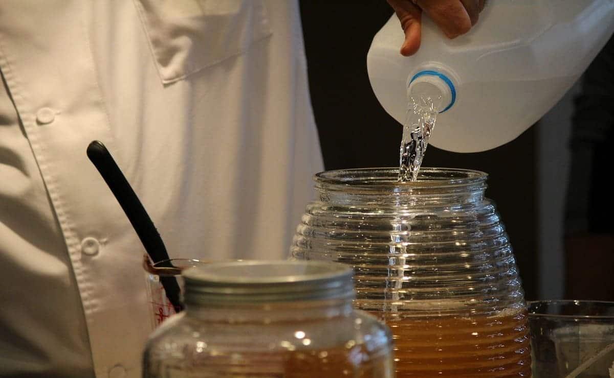 preparación del jugo de kombucha