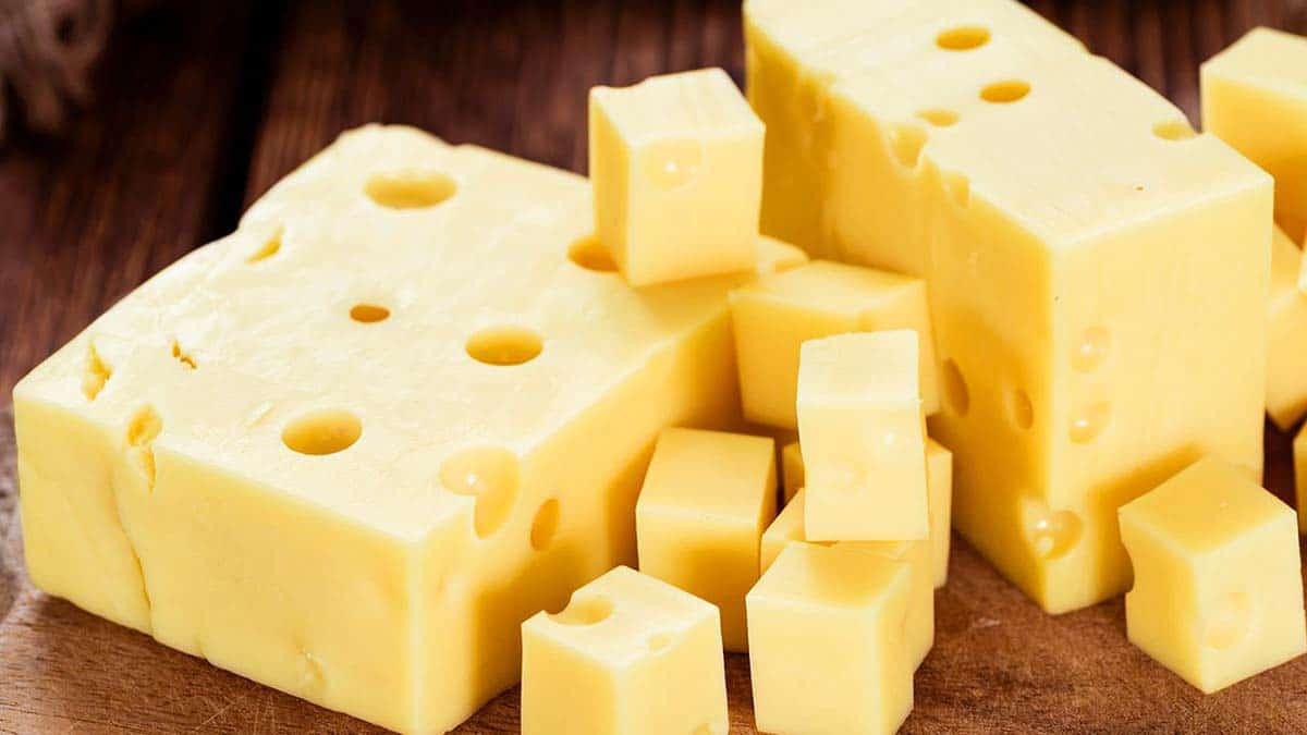 queso suizo elemental sistema inmunológico