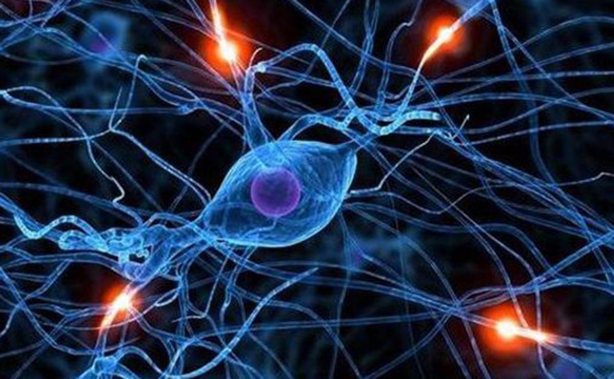 enfermedad trastorno cerebral vitamina B1