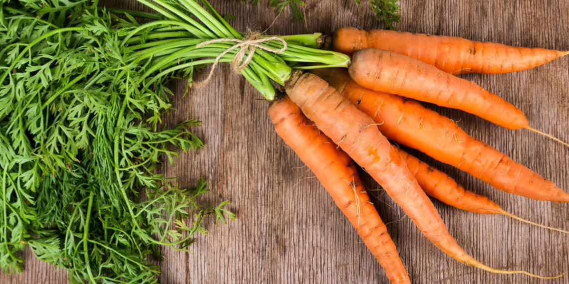 zanahorias ricas en vitamina K