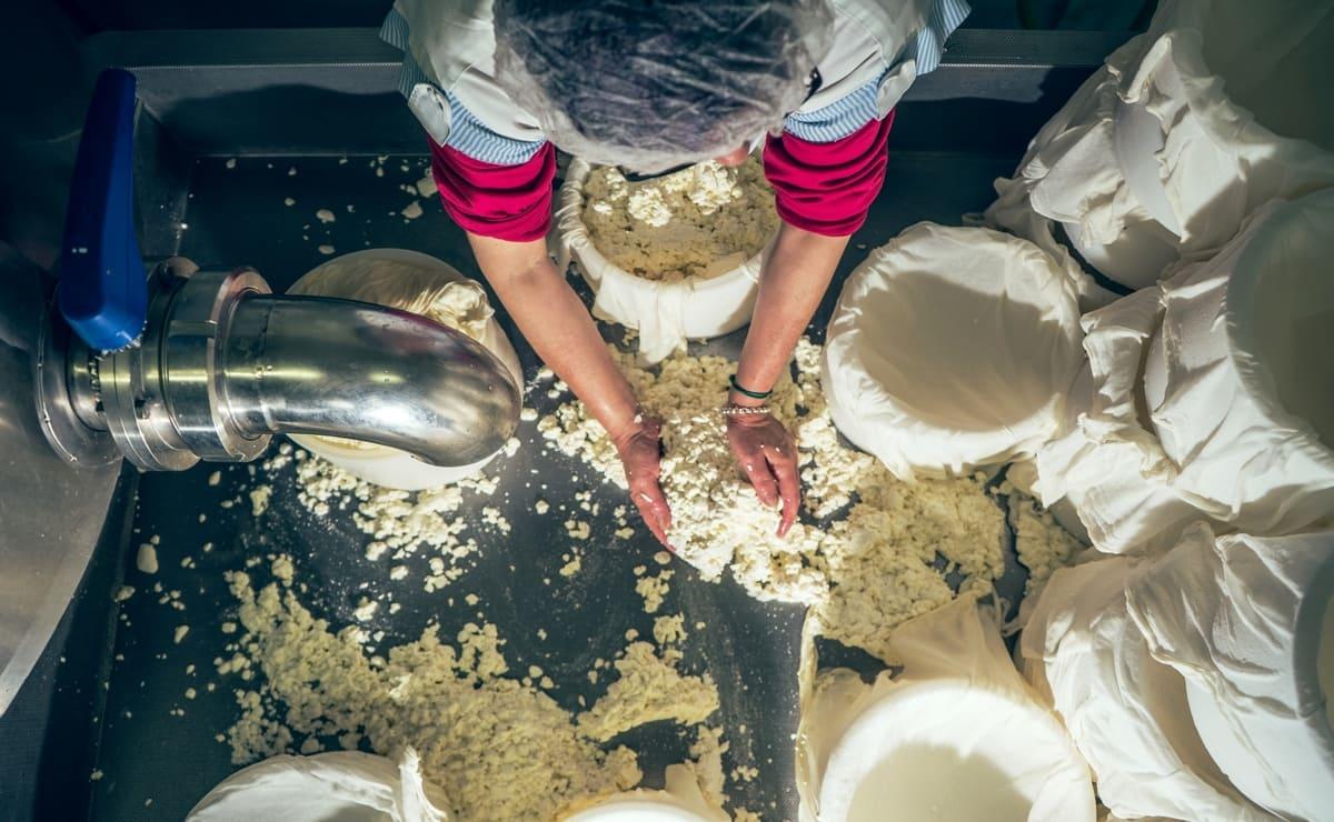 mujer produciendo quesos para la dieta humana