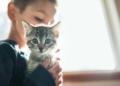 Niño con autismo junto a un gato