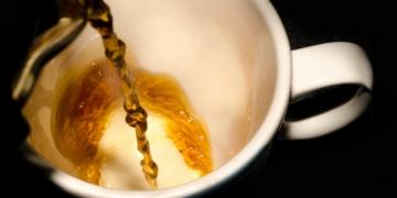 el te es antioxidante