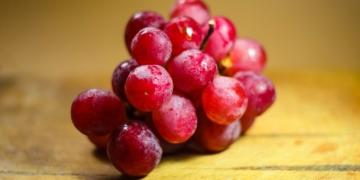 las semillas de uvas son buenas para la salud