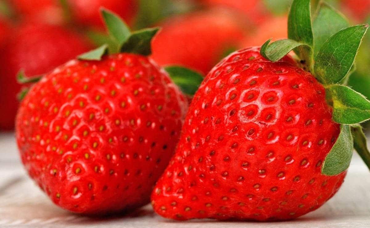 Fresas colesterol triglicéridos