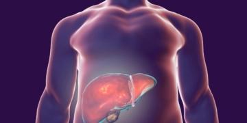 Metabolismo grasa