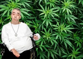 Juan Manuel Rodriguez Gantes marihuana cannabis