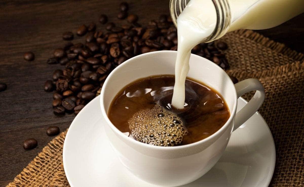 cafe leche propiedades