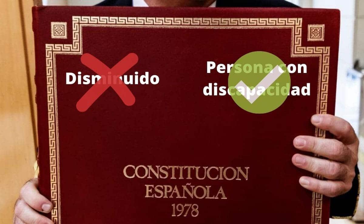 disminuido persona con discapacidad constitución