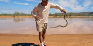 Frank Cuesta con una serpiente mulga