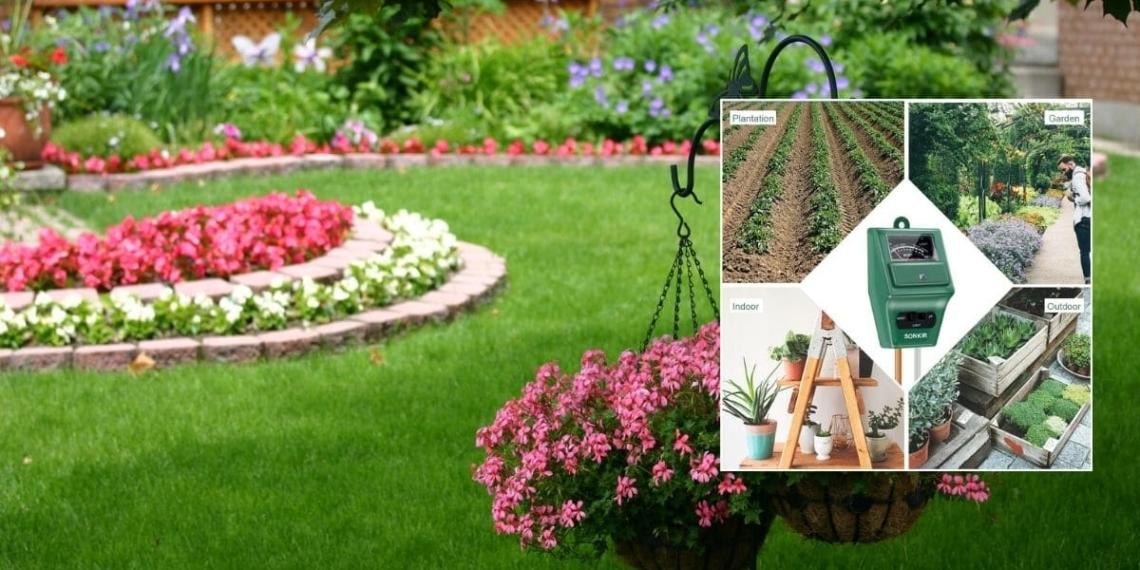 Medidor de humedad para jardin en verano