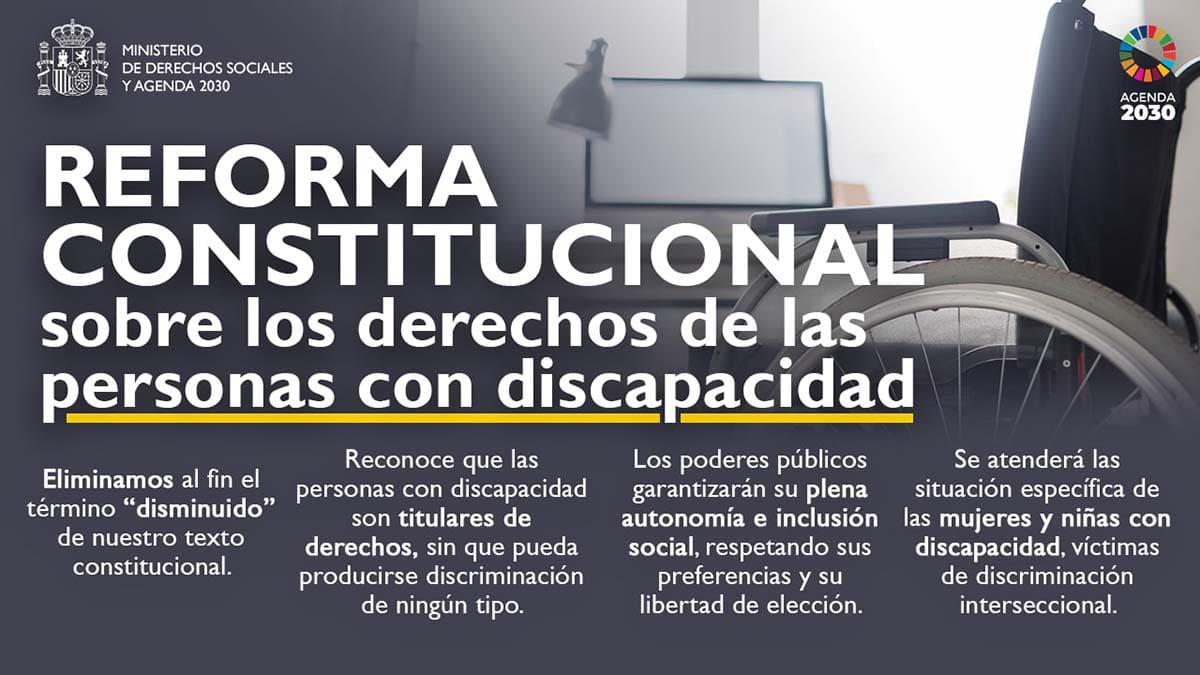 discapacidad constitución española