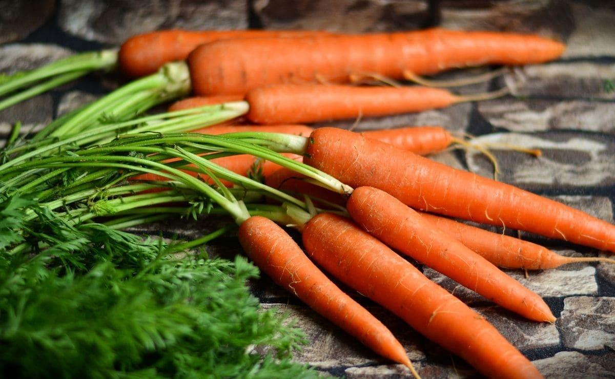 zanahoria acne