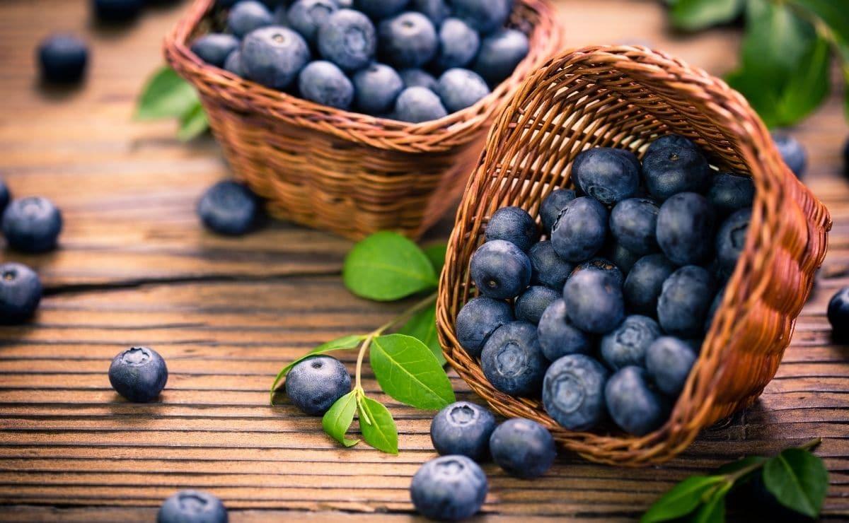 Fruta del bosque arándanos