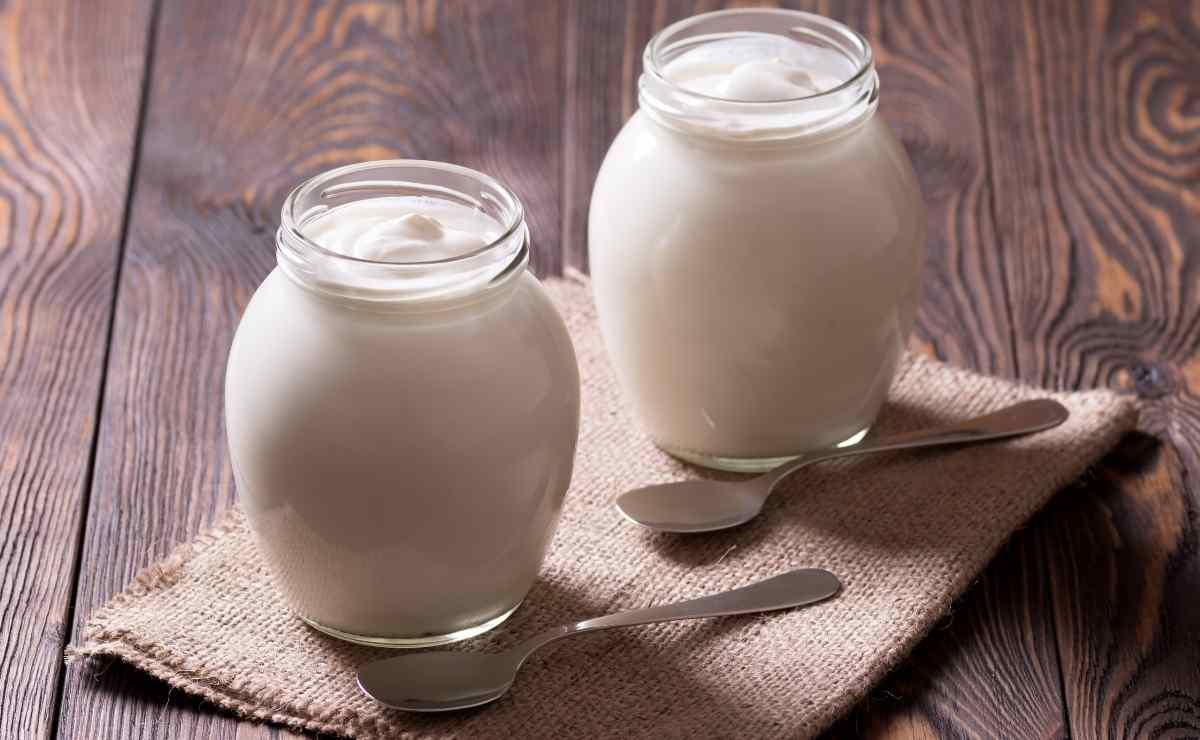 Yogur alimentos probióticos